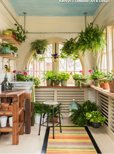 Indoor Plants Add Style and Cheer in Winter | Property Catalysts, LLC